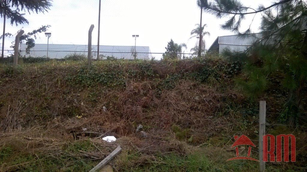 71 - Terreno - Pioneiro - Caxias Do Sul -dormitório(s) -suíte(s) - foto 1