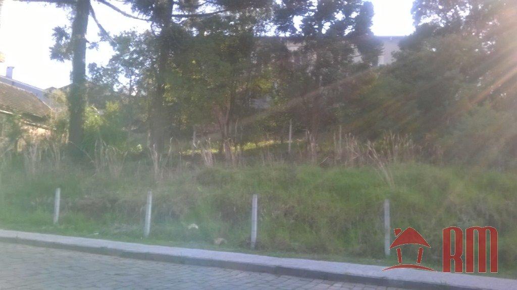 46 - Terreno - São Leopoldo - Caxias Do Sul -dormitório(s) -suíte(s) - foto 1