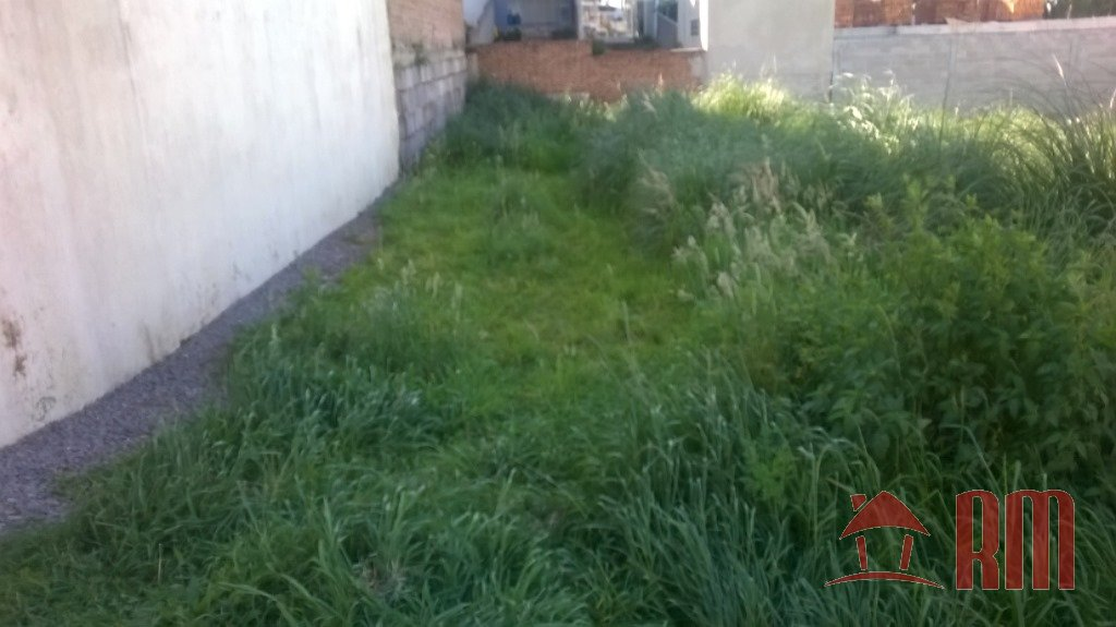 74 - Terreno - Vinhedos - Caxias Do Sul -dormitório(s) -suíte(s) - foto 1